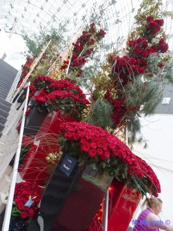 Christmasworld 40.000 rote Rosen